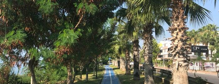Lara Caddesi Yürüyüş Yolu is one of Tempat yang Disukai Dsignoria.