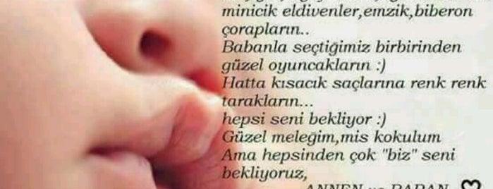 Doruk Bursa Hastanesi Acil Servis is one of สถานที่ที่ Mustafa ถูกใจ.