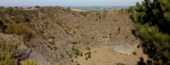 Mount Schank is one of South Australia (SA).