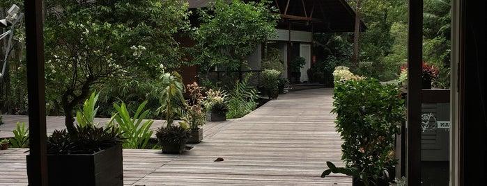 kinabatangan wetlands resort is one of Lugares favoritos de Ben.