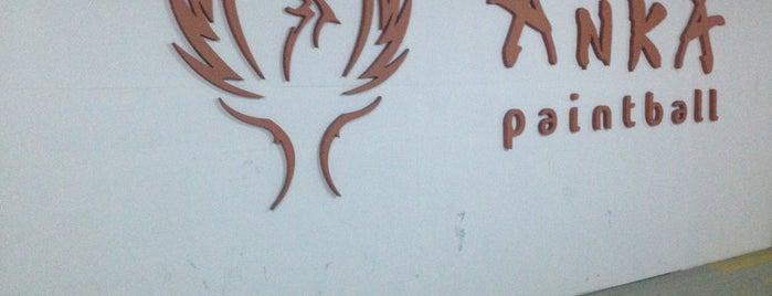 Anka Paintball is one of Pniatbal_g.
