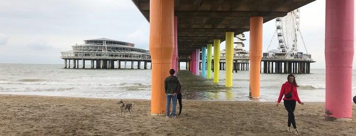 beach Scheveningen is one of The Hague.