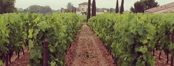 Château Petrus is one of Lugares favoritos de Rita.