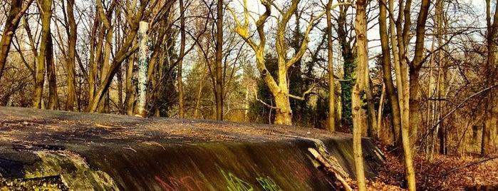 Volkspark Schönholzer Heide is one of Berlin.
