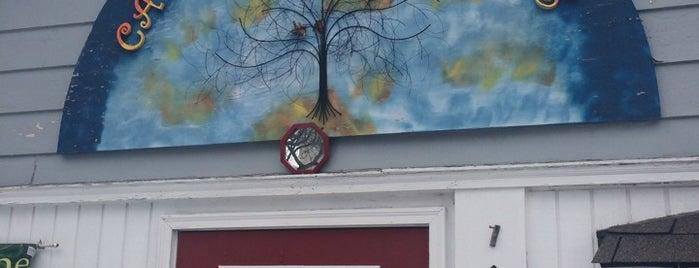 catalpa tree is one of Orte, die Andrew gefallen.