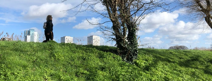 Woodberry Wetlands is one of Cool & Fun Places In London.
