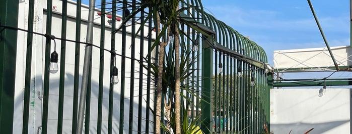 La Belle Plant is one of LA Top Shops.