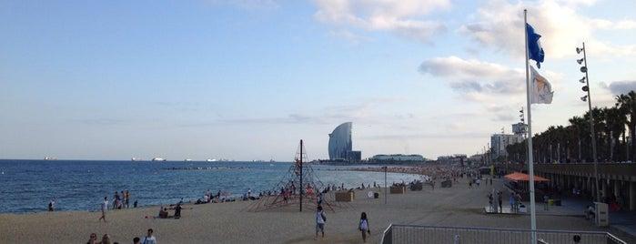 Passeig Marítim de la Barceloneta is one of Barcelona, Espanha.