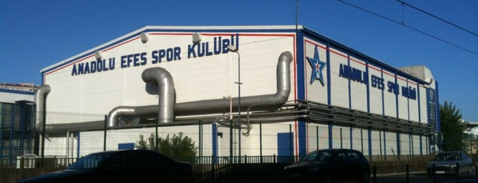 Anadolu Efes Spor Kulübü is one of Locais curtidos por Sinan.