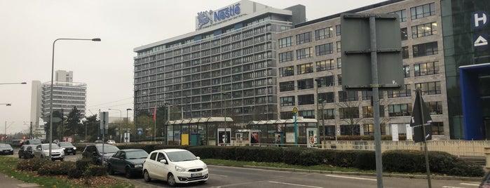 Nestlé Deutschland is one of Offices.