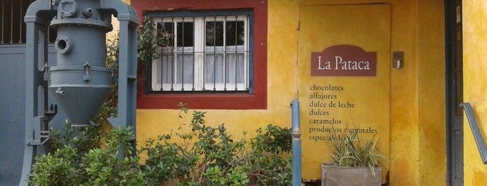 La Pataca is one of Lugares favoritos de Yani.