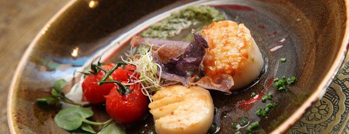 Toro Gordo is one of Restaurants in London.