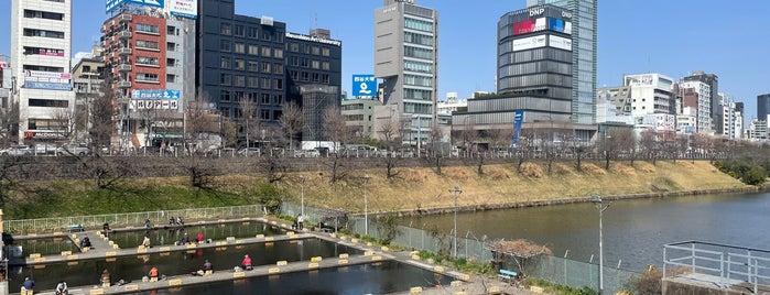 Ichigaya Fish Center is one of สถานที่ที่ Masahiro ถูกใจ.