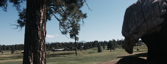 Pagosa Springs Golf Course is one of Bryon 님이 좋아한 장소.