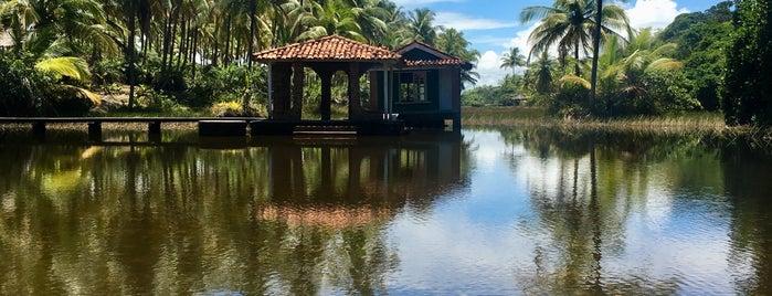 Tikal Praia Bar is one of América do Sul e Central bar/pub.