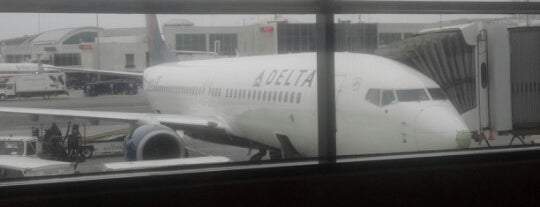 Delta BayBay! is one of YUL/HNL2013.
