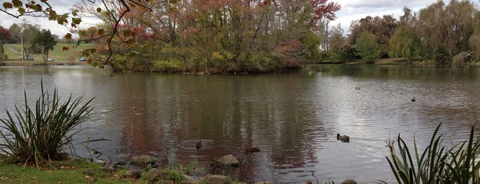 Duck Pond is one of Virginia Tech.