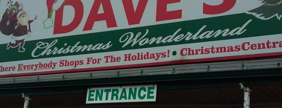 Dave's Christmas Wonderland & Market is one of Interesting Places in WNY.