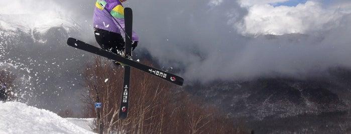 Wildcat Mountain Ski Area is one of Up Coming Skiresort.