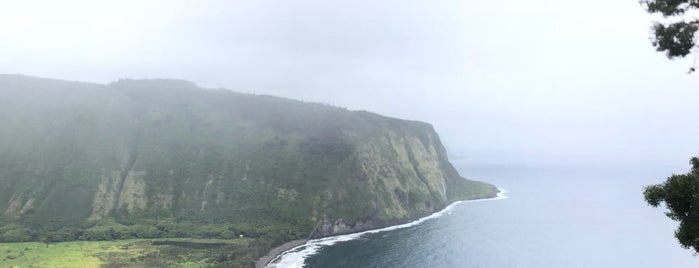Waipio Lookout is one of William's Liked Places.