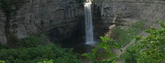 Falls Overlook is one of Upstate NY 2017.