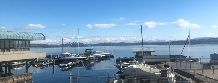 Leschi Park is one of Seattle's 400+ Parks [Part 1].