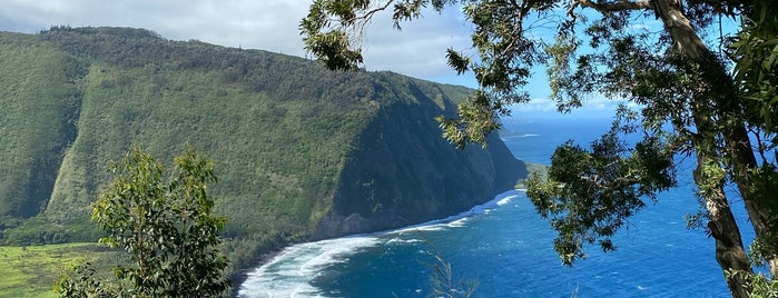 Waipio Lookout is one of Hawai'i.