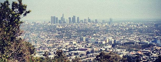 Griffith Park is one of #myhints4LosAngeles.