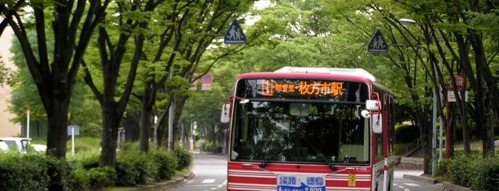枚方八景 香里団地の並木 is one of Mirei Shigemori 重森三玲.