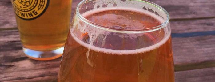 Ecusta Brewing Company is one of NC Trip.