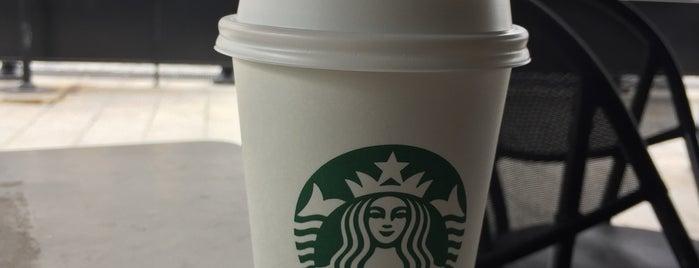 Starbucks is one of Ertuğrul 님이 좋아한 장소.