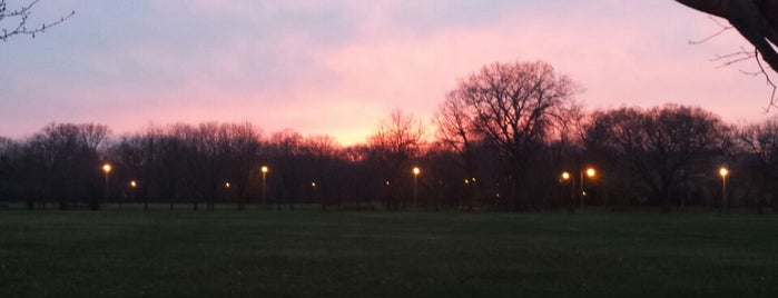 Avalon Park is one of Chicago Park District Fitness Centers.