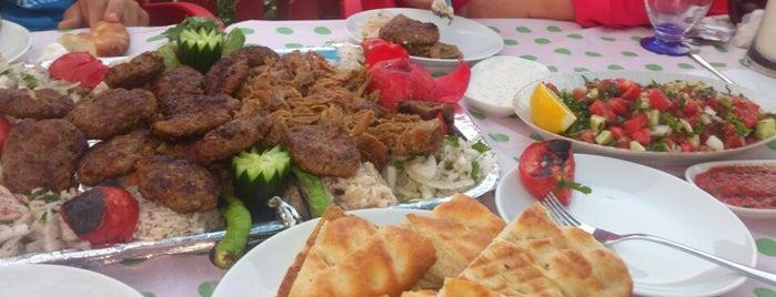 Osmanlı Tandır Kebap is one of Türk İşi.