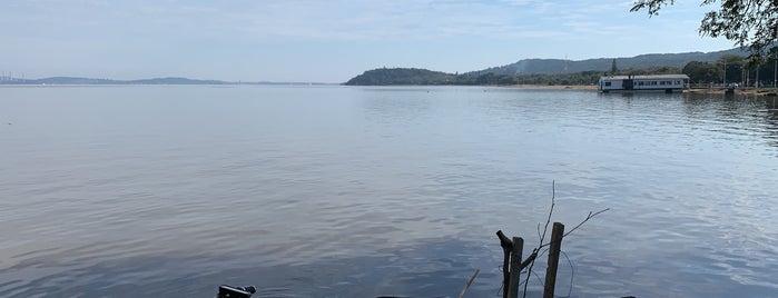 Ipanema is one of Turistas nativos.