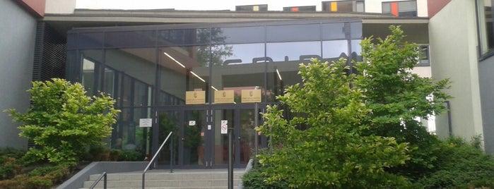 NAV Központi Ügyfélszolgálat is one of Zsolt's Liked Places.