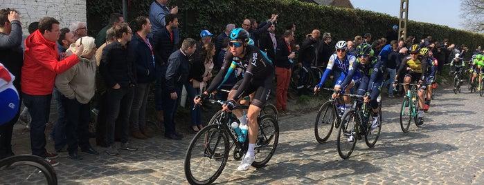 Holleweg is one of Belgium / Events / Ronde van Vlaanderen 2019.
