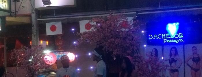 Bachelor Agogo is one of strip clubs 3 XXX.