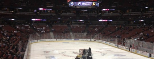 Honda Center is one of NHL Arenas 2013.