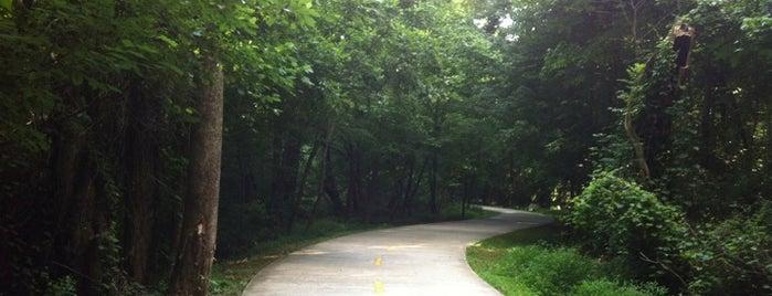 Big Creek Greenway is one of Born to Run.