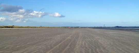 Dollymount Beach is one of Diana's Liked Places.