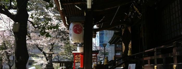 新宿十二社 熊野神社 is one of Tokyo as a local.