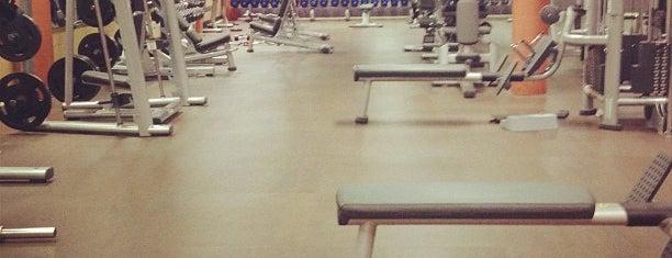 Anytime Fitness is one of Lugares favoritos de Raluca Bastucescu.
