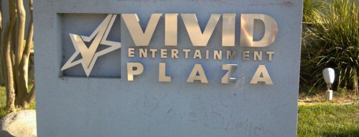 Vivid Entertainment LLC is one of My FAV Hot Spots.