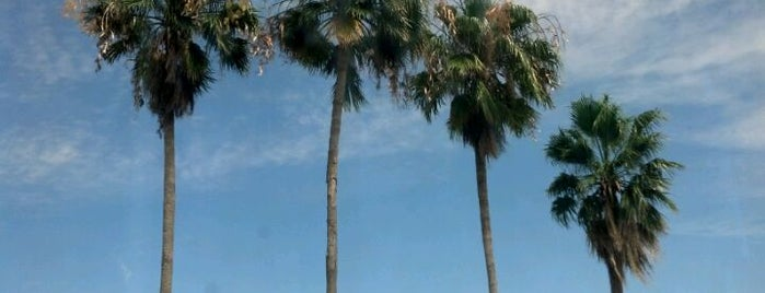 Four Points by Sheraton Fort Lauderdale Airport/Cruise Port is one of Lieux qui ont plu à Tom.