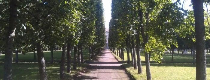 Музей-усадьба «Архангельское» is one of Сады и парки Москвы.