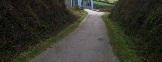 The Camel Trail - Padstow is one of Cornwall.