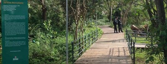 Parque Jardim Herculano is one of Parques em SP.