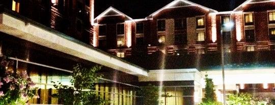 Hilton Garden Inn is one of Must Stay Hotels.