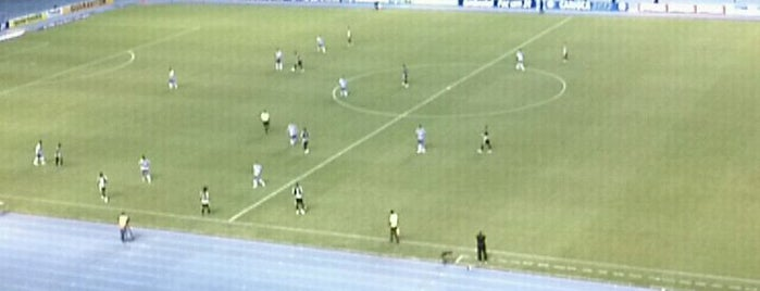 Estádio Olímpico Nilton Santos is one of compartilhar com amigos.