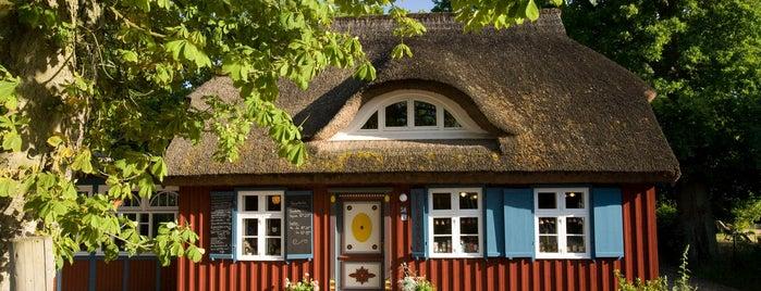 Teeschale - Teestube & Laden is one of Ahrenshoop.
